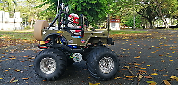 1/10 Tamiya WILD WILLY 2 - Special collection